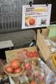180912 八幡平地熱活用プロジェクト PRブース-03