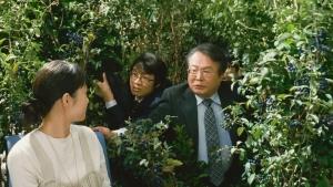 宮崎あおい クリーム玄米ブラン 「自然素材を会社で」篇0007