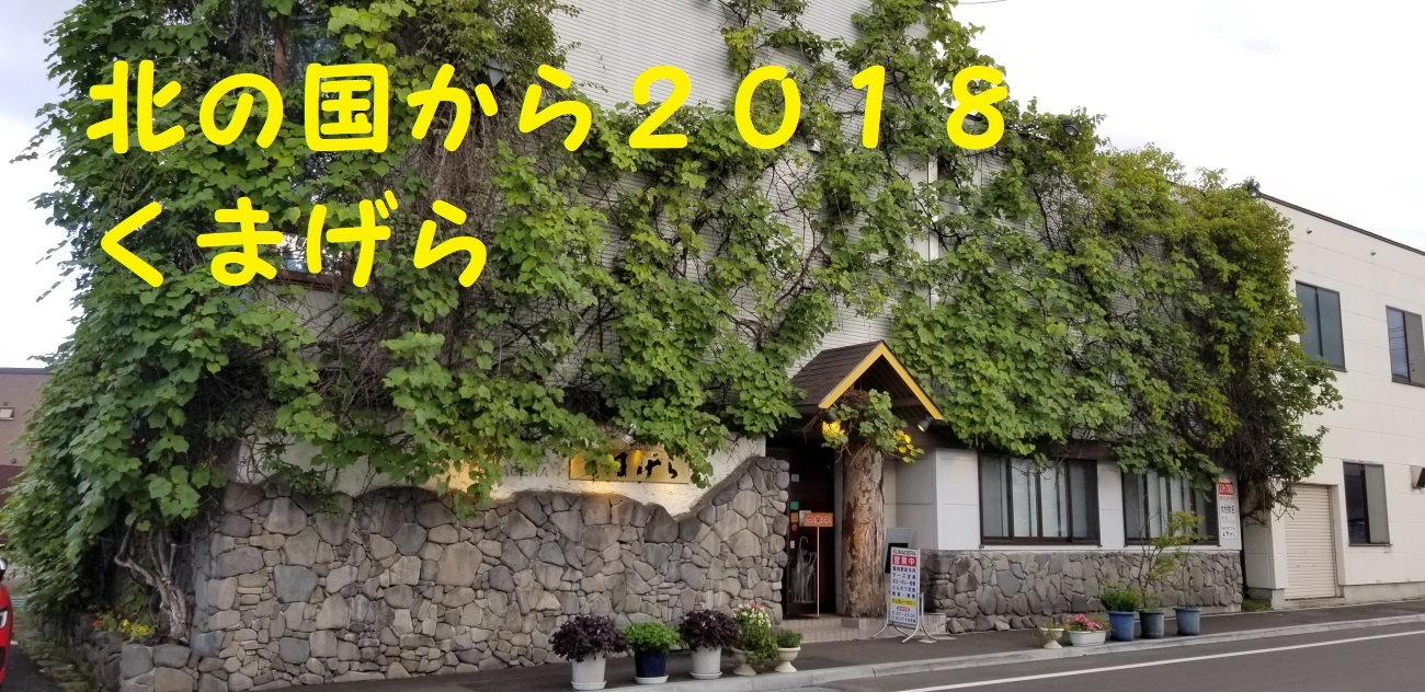 20180817_165621.jpg