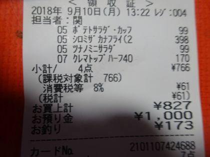 mini_DSC09413_20180910134707af7.jpg