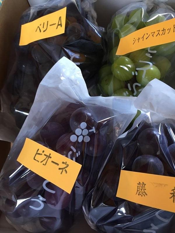 葡萄いろいろ