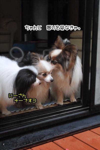 台風前の涼しい日00059036