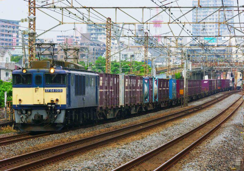 EF64-1000 1019号機 原色 東海道線 平塚 大磯 東海道熱海口貨物 撮影地 貨物列車