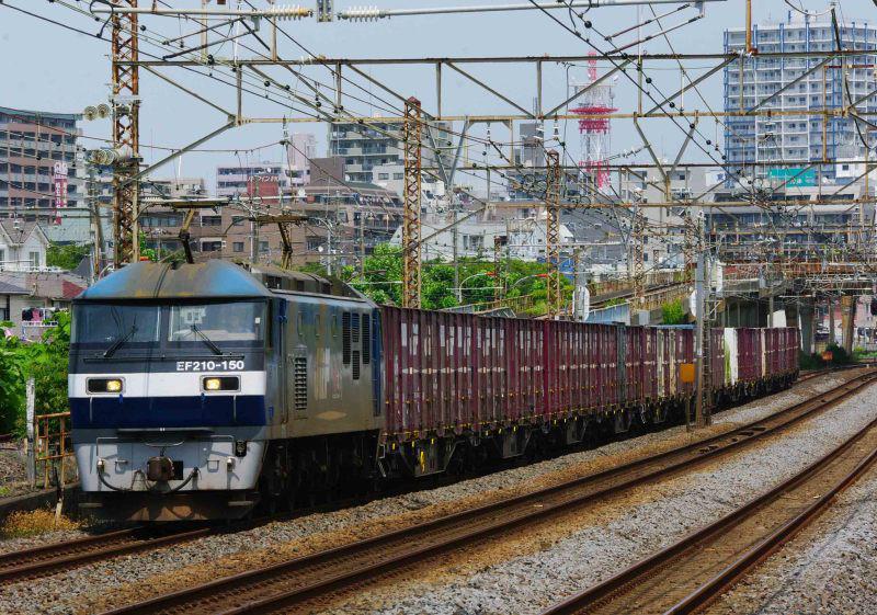 1155ㇾ 平塚 大磯 東海道線 EF210 桃太郎 貨物列車 撮影地
