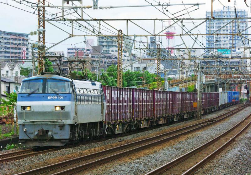 5095ㇾ EF66-100 サメ 平塚 大磯 東海道線 撮影地 貨物列車 鍼灸マッサージ 平塚市 治療院
