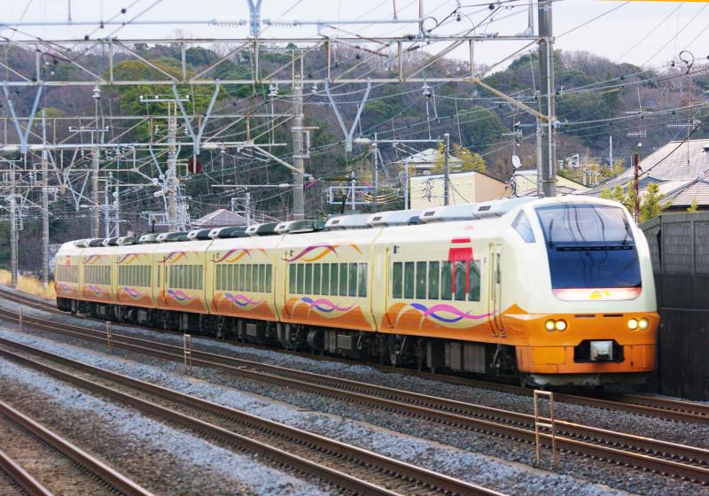 E653系 E653系いなほ色 大磯 二宮 東海道線 伊東臨 究極の583系