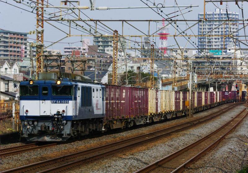 3075ㇾ 平塚 大磯 東海道線 EF64-1000 貨物列車 撮影地 究極の583系