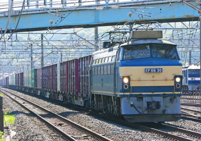 EF66-0 30号機 ニーナ 東海道線 大磯 平塚 撮影地 貨物列車 究極の583系
