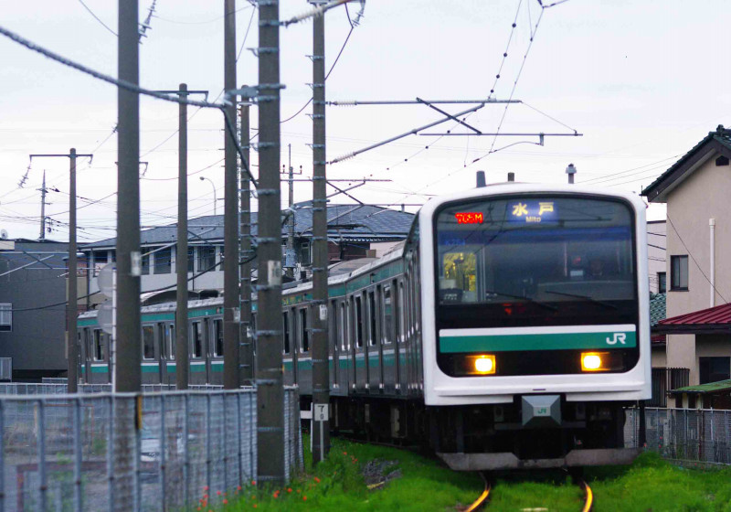 E501系 485系 485系改 リゾートエクスプレスゆう 水戸線 小山 小田林 撮影地 究極の583系 駅近