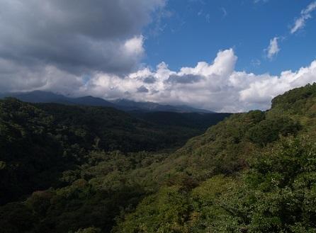 山梨の渓谷