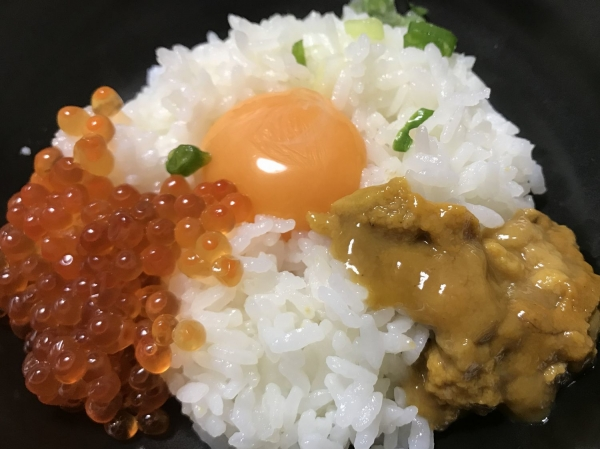 ふるさと納税 北海道八雲町 いくら醤油漬100g×6パック (15-2)