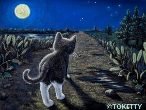 awmimi moonlightwalksml