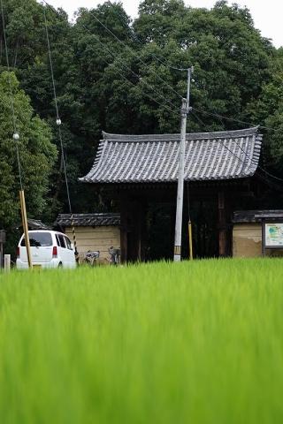 秋篠寺・南門