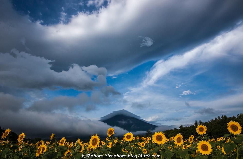 2014-08-23_huji_0082.jpg
