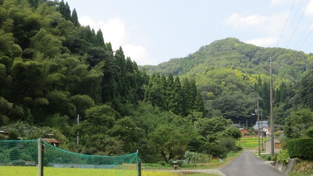 53八雲山IMG_2245 - コピー