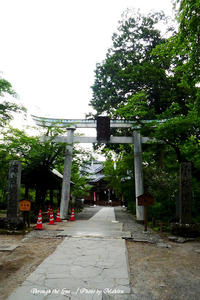 本丸跡・懐古神社TZ1