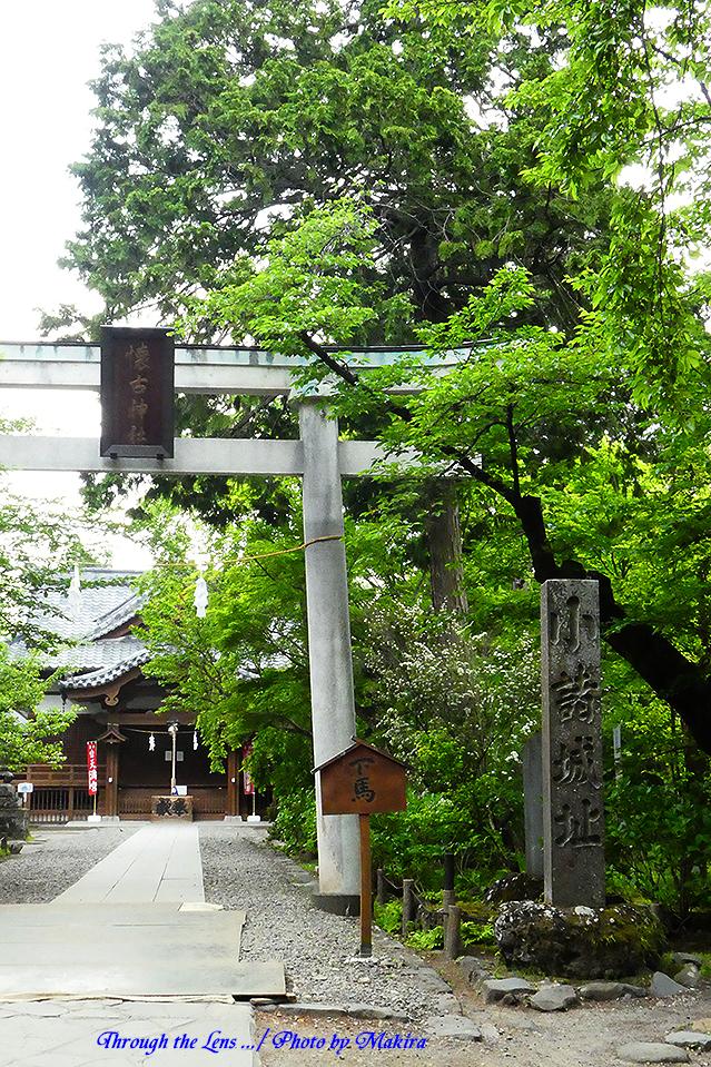 本丸跡・懐古神社TZ2