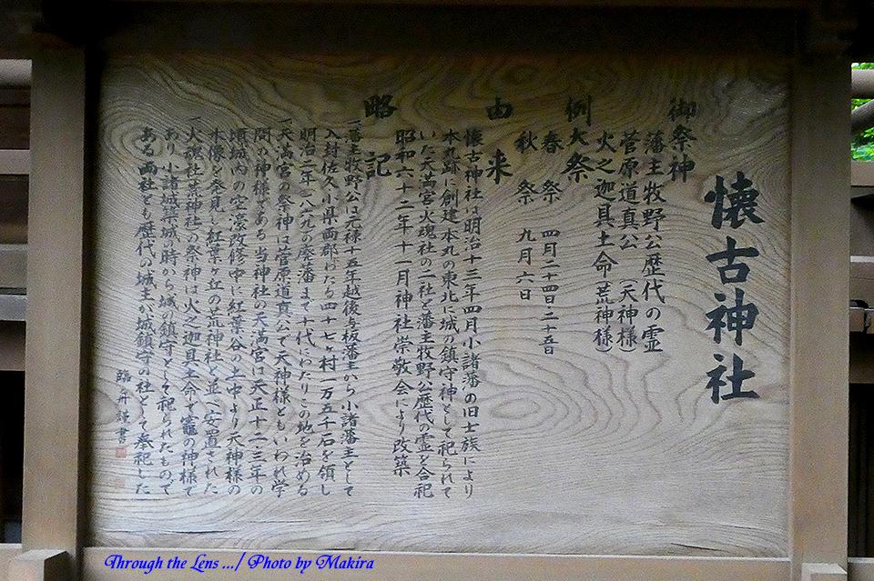懐古神社TZ1
