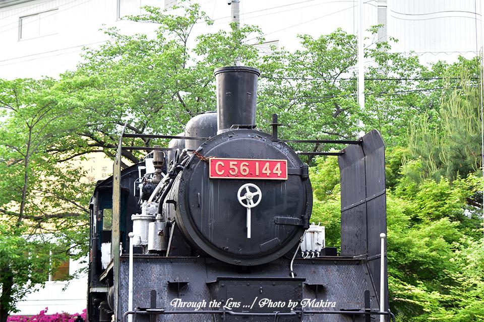 展示蒸気機関車56D1