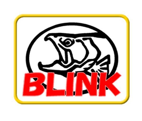 BLINK01.jpg