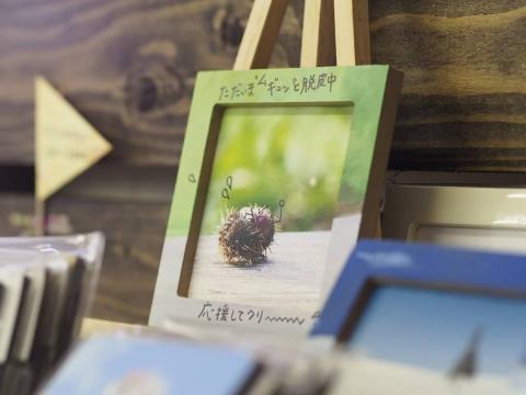 くりクリ20181009-04