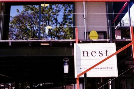 nest_2.jpg