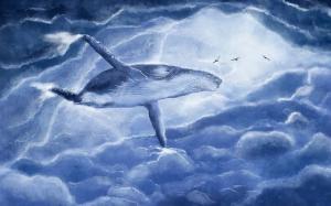 the-whale-2630647_640-640x400_convert_20180812154636.jpg