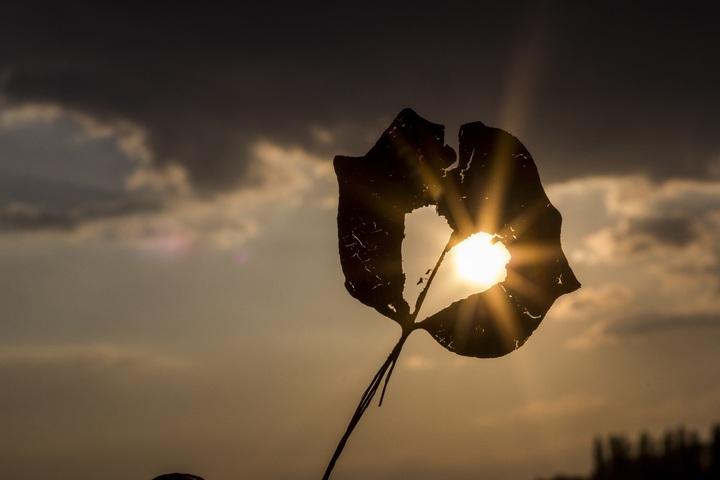silhouette-light-cloud-sky-sun-sunset-910038-pxhere-com.jpg