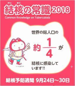 2018tb_commonsence_dl2.jpg