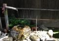 稲荷の井戸