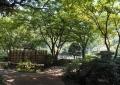 横浜公園内の日本庭園