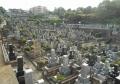 久保山墓地①