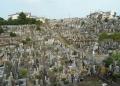 久保山墓地②