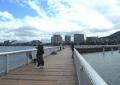 桟橋で釣りをする人