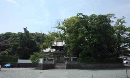 20180517_iwata_saikouji_004.jpg