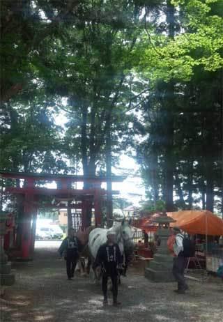 20180608_cyagucyagu_035.jpg