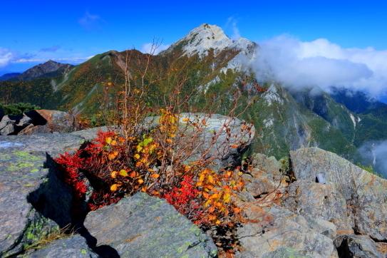 紅葉彩る東駒ケ岳