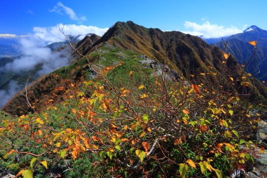 錦秋のアサヨ峰と北岳