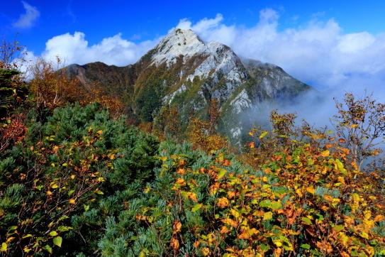 黄葉彩る東駒ケ岳