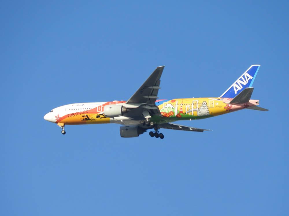 飛行機DSCN1245
