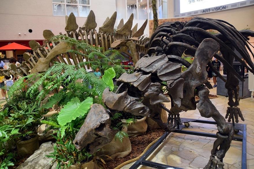 恐竜ランド (6)