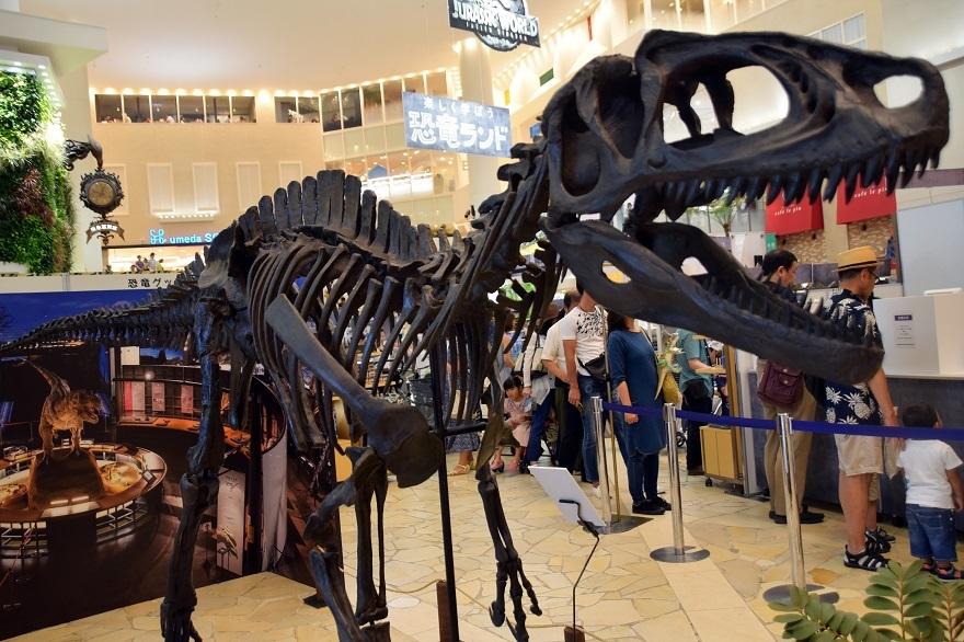 恐竜ランド (7)