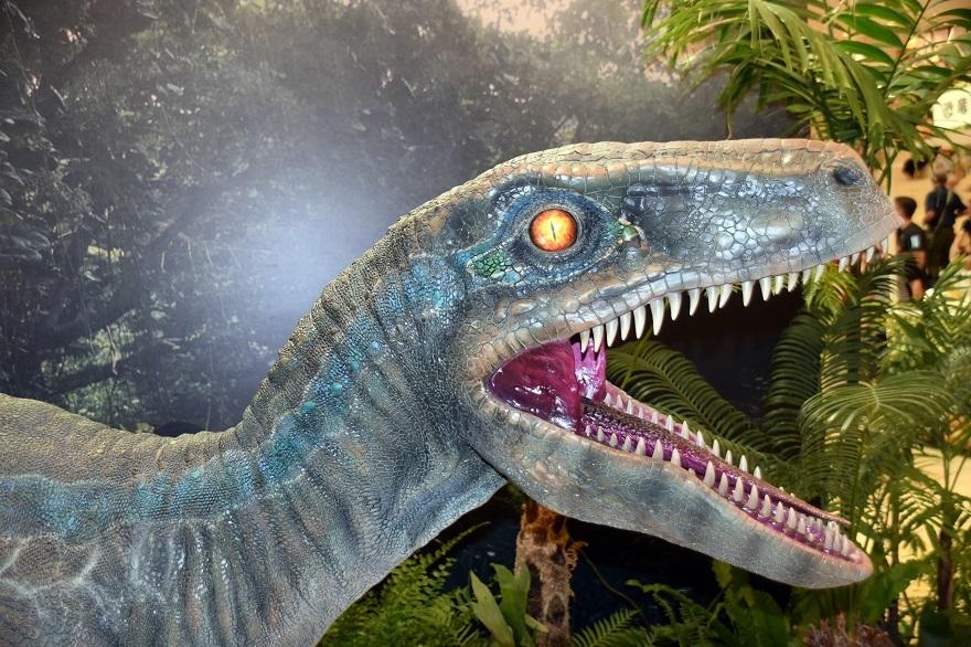 恐竜ランド (11)