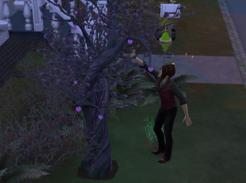 The Sims™ 4_20180810134642