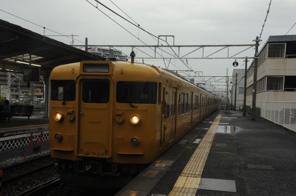 DSC_9995.jpg