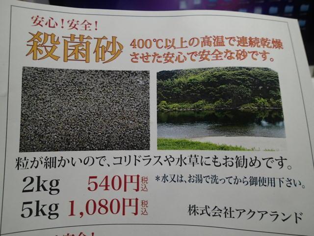 P9300037.jpg