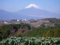 1220-1富士山