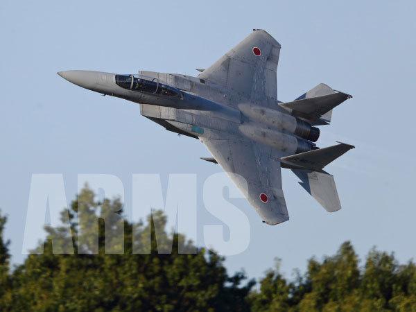 JASDF 2018 岐阜基地 航空祭 F15