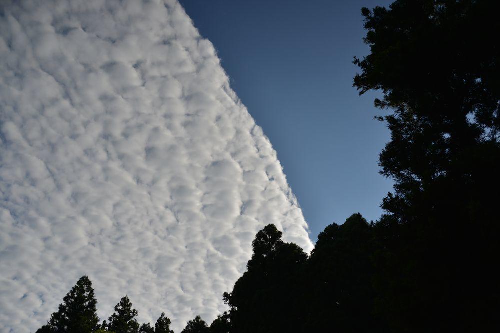 夏空の雲-1