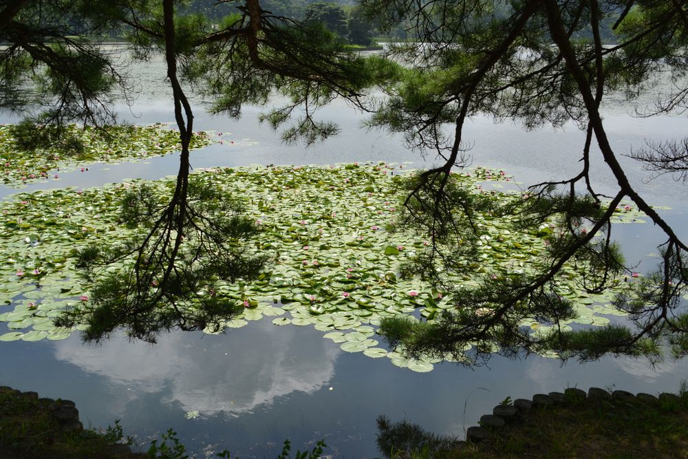 南湖と翠楽苑-3
